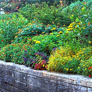 flower garden behind a retaining wall