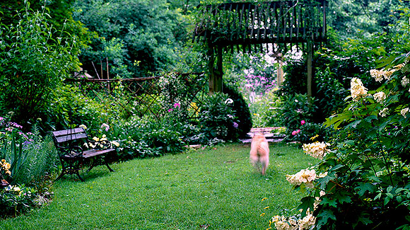 Garden design Archives - Page 2 of 5 - P. Allen Smith on