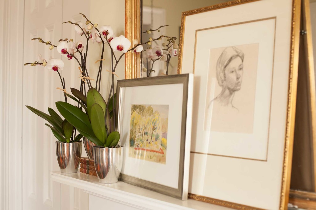 How To Care For Phalaenopsis Orchids After They Bloom P Allen Smith