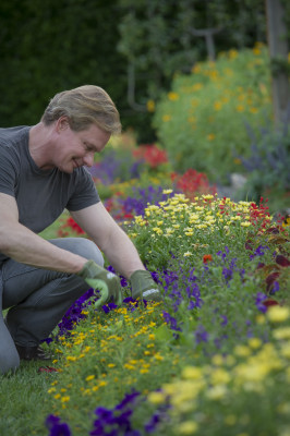 weeding gardening exercises